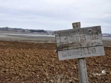 ecoquijote-ecoturismo-cuenca-laguna-de-el-hito-birding