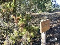 Sendero botánico en Los Callejones de Las Majadas