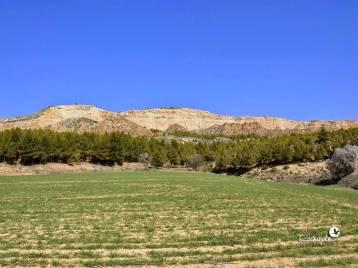 ecoquijote-ecoturismo-cuenca-ruta-castillejo-del-romeral-terremoto1