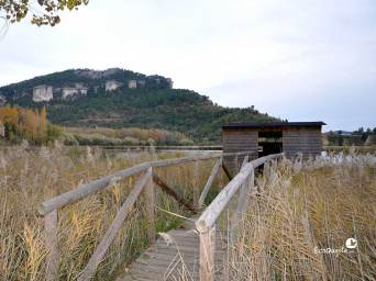 ecoquijote-ecoturismo-cuenca-observatorio-de-aves-acuaticas-una