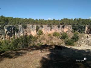 Laguna en Torcas de Palancares y Lagunas de Cañada del Hoyo